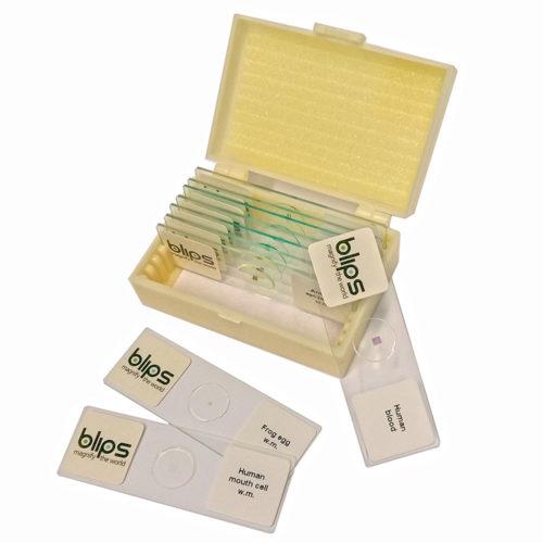 Blips prepared slides for microscopy